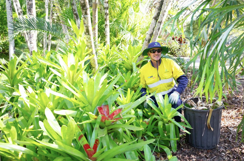Considerations for Gardening and Grounds Maintenance: Programmed Property Services Gold Coast
